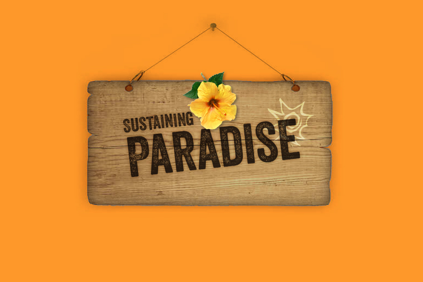 USVI HOTEL & TOURISM ASSOCIATION